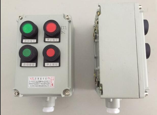 BZC51-A2D2G防爆操作柱.jpg